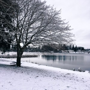 Snow Day in Snohomish