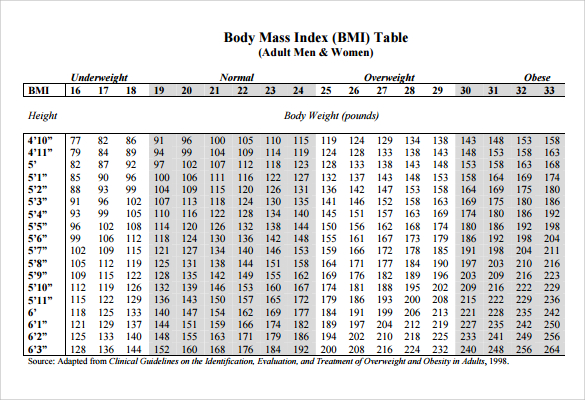 Best BMI Chart Templates for Men  Women Every Last Template