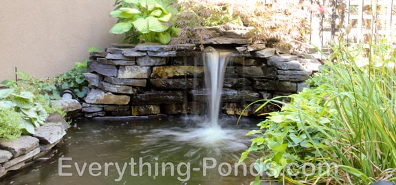 Pond Designs - Everything-Ponds.Com