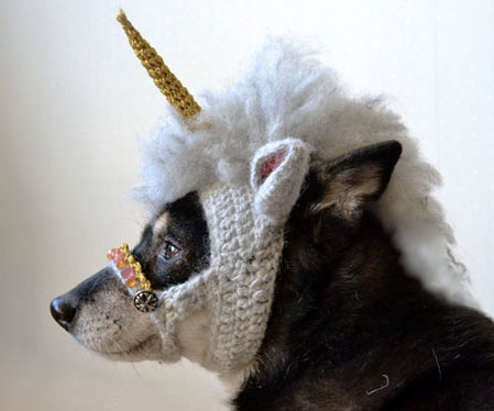 1549.crocheted-unicorn-dog-mask.jpg