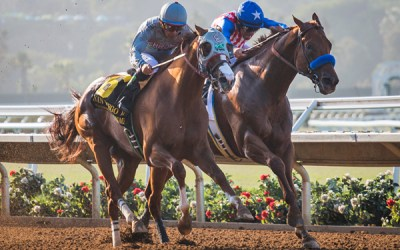 California Chrome Wins San Diego Handicap