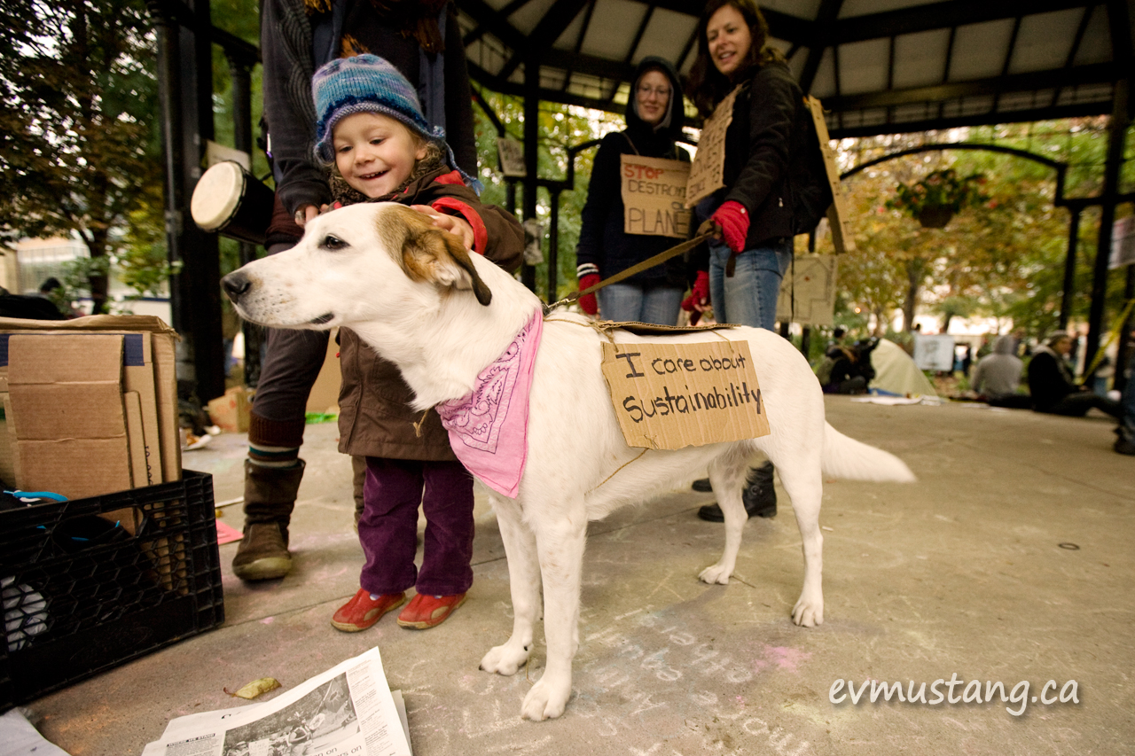 "image of toddler petting a dog with ""i support sustainability"" sign at occupy toronto"