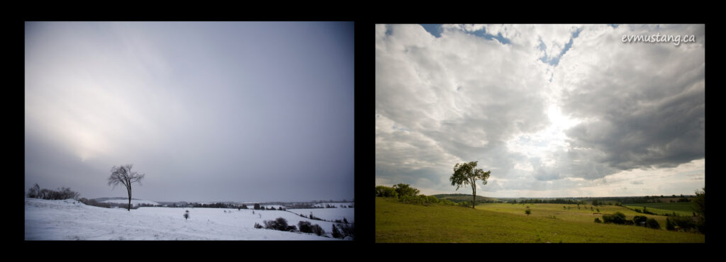 dyptich image of a field in winter and summer