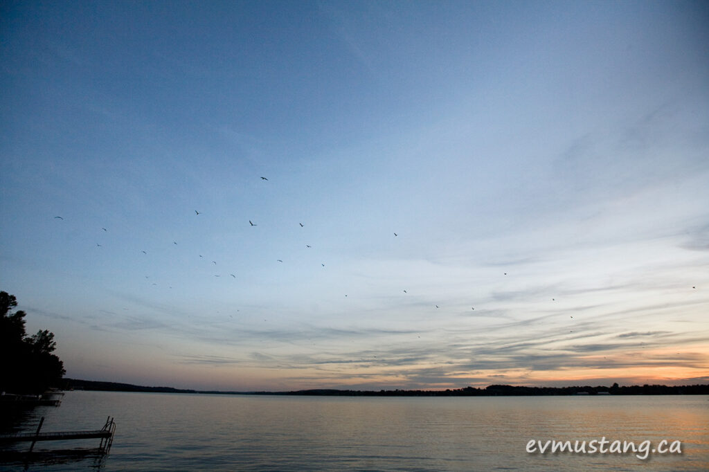 image of sunset over lake with dock and seagulls flying