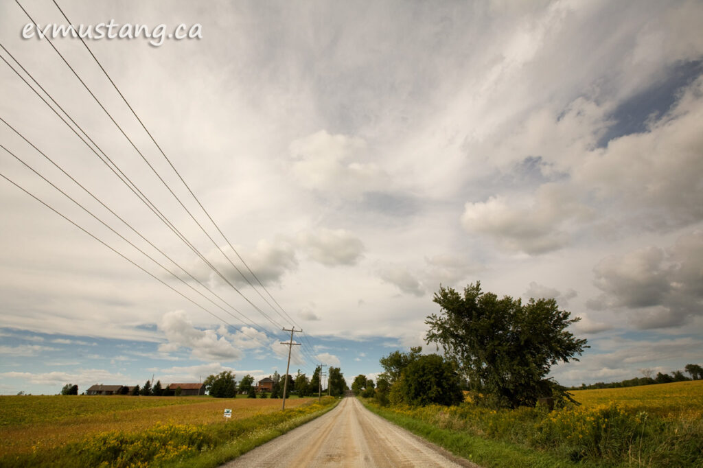 image of country road in late summer south of peterborough, ontario