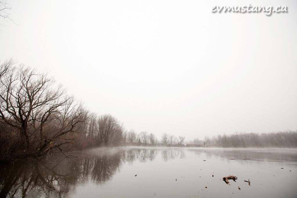 image of fog over pond, london, ontario