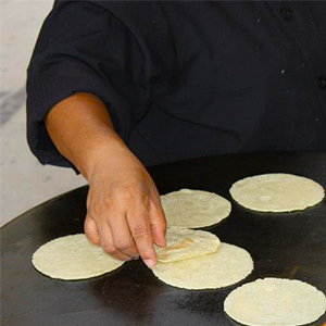 Evo Recipe Homemade Flour Tortillas