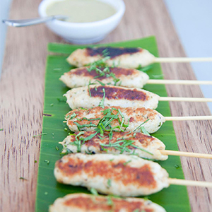 Evo Recipe Chicken Satays