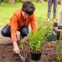 """""""mmh..."""" Ausreißen, was gepflanzt ist... Schöner scheitern mit der Gartenschau."""