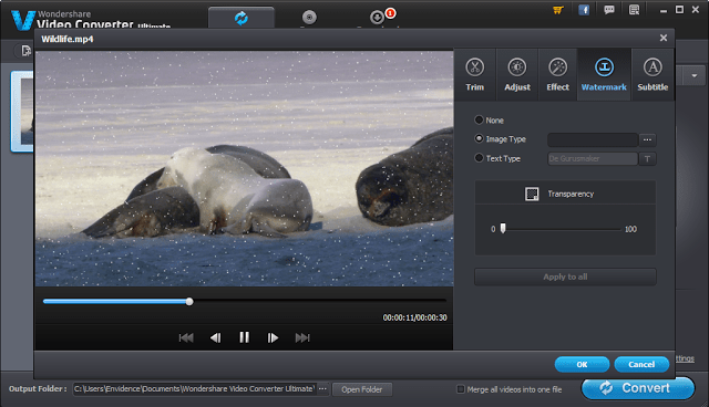 Image: Video Editor