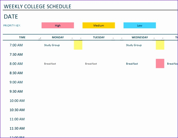 Daily Timetable Template Excel Ganxc Lovely Daily Schedule Fice