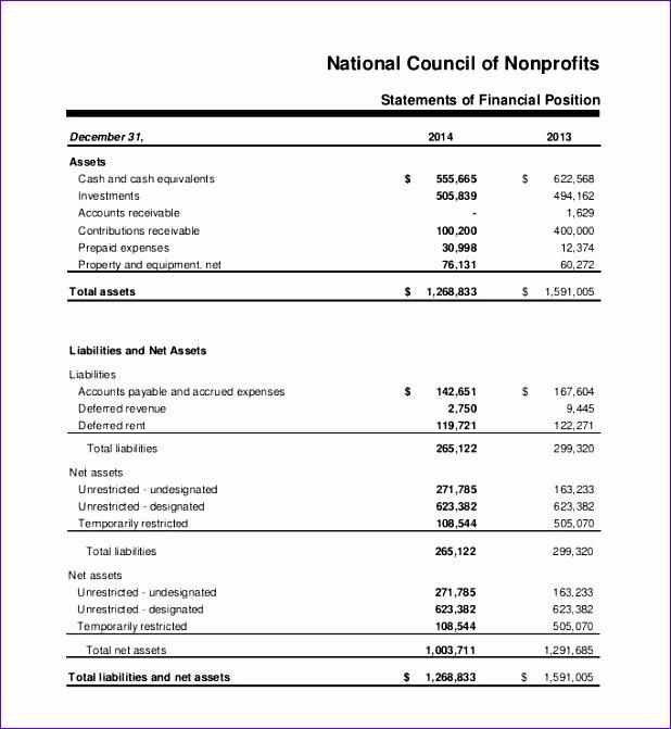 Non Profit Balance Sheet Template Excel Mezjs Best Of Annual