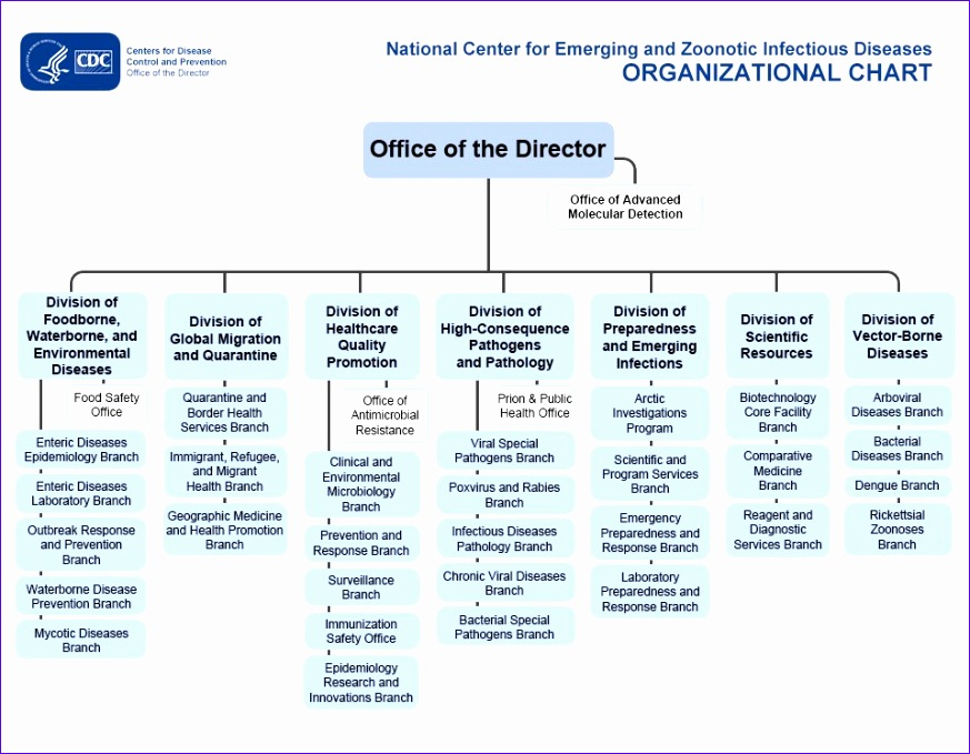 9 organization Chart Excel Template - ExcelTemplates - ExcelTemplates - iq chart template