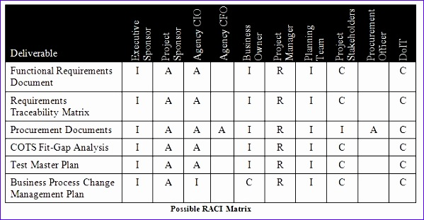 Raci Matrix Template Excel Gyxgl Beautiful Phase 4 Requirements - requirement analysis template