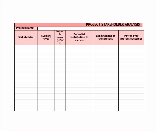 Stakeholder Analysis Template Excel Syaiy Lovely Stakeholder - sample project analysis