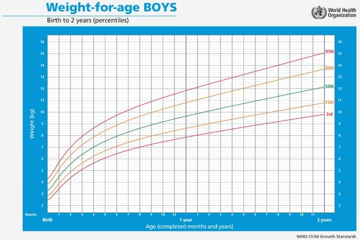 6+ Baby Growth Chart Templates \u2013 Word Templates