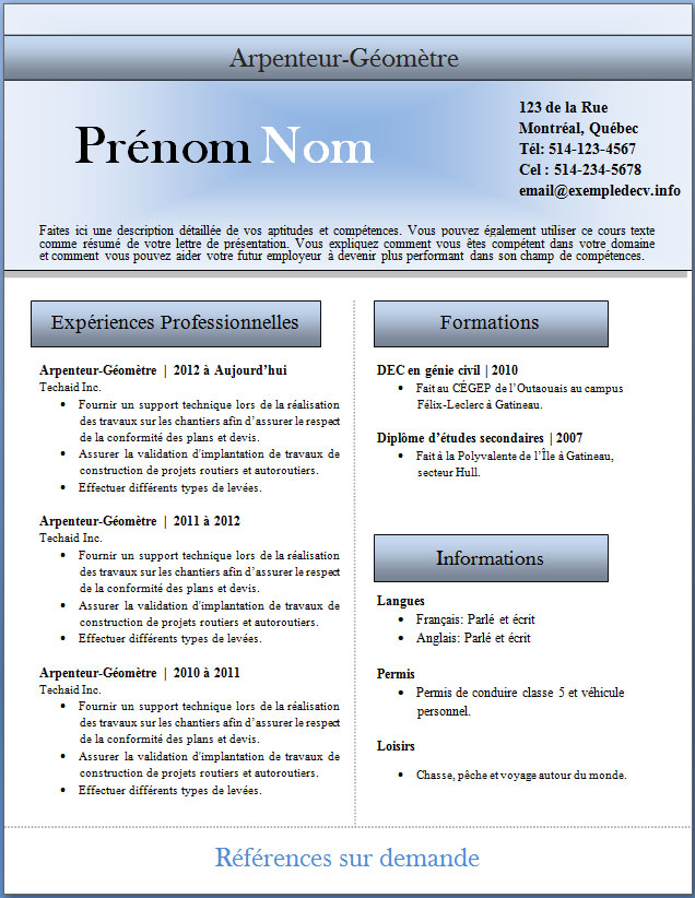 exemple de cv professionnel informatique