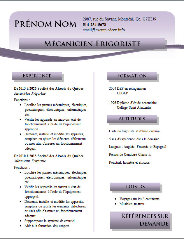 cv exemple niveau de langue