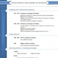 Modèles et exemples de cv #803 à 809