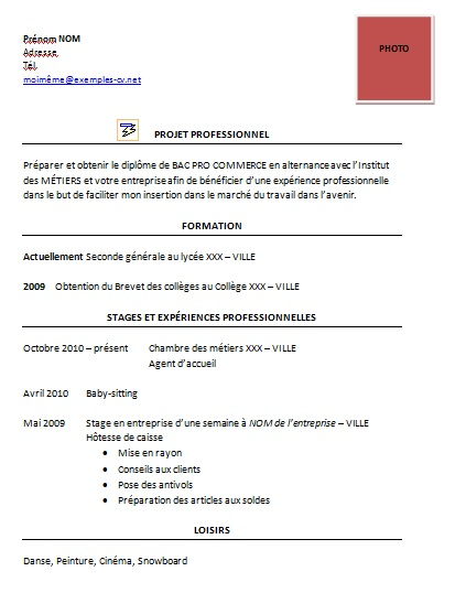 cv seconde bac pro stage