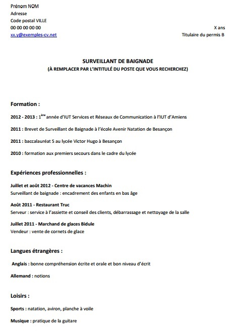 cv exemple interim