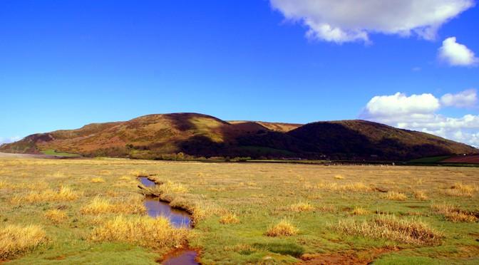 porlock marsh