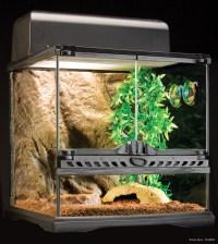 Exo Terra : Habitat Kit Invertebrate / Kit di partenza per ...