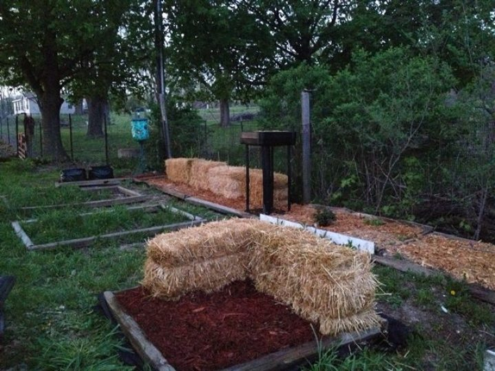 This front bed has two straw bales in it that I will grow plants in. The rest of the raised bed is filled 1/2 of the way with soil and compost and 1/2 of the way with mulch. I have several varieties of herbs growing in this mixture right now and they are doing very well.