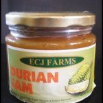 Where to Buy Durian in Negros