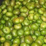 Batuan Fruit is the Best!