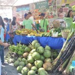 9th Negros Island Organic Farmers Festival a Huge Success