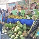 9th Negros Island Organic Farmers Festival a Huge Success