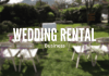 wedding business ideas & plans