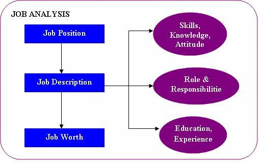 Conducting Job Analysis, Assignment Help, Homework Help, HRM - job analysis