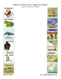 Pin Animal Habitats Lessons Worksheets And on Pinterest