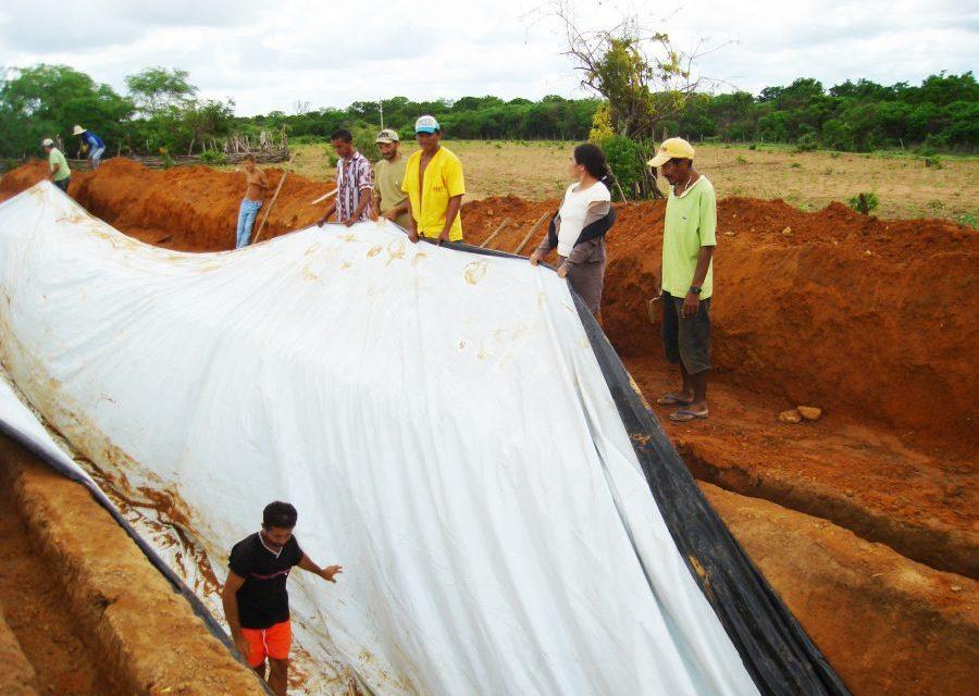 Famílias agricultoras fortalecem a produção com novas tecnologias