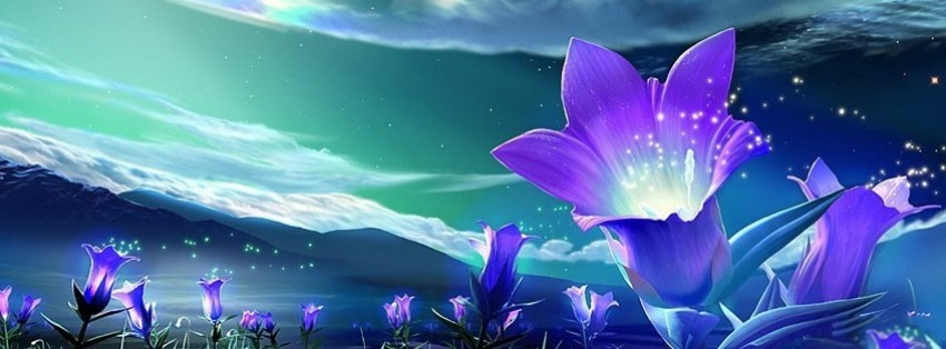3d Blossoms Live Wallpaper Facebook Covers Amp Facebook Profile Covers F Covers Com