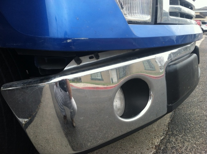 2010 Front bumper replacement - Ford F150 Forum - Community of Ford