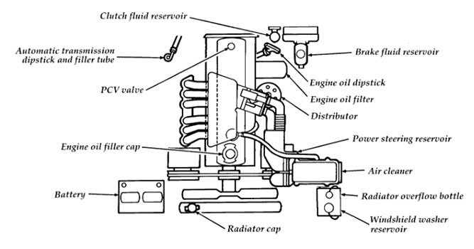 96 Ford F 150 4 9 Engine Diagram Electronic Schematics collections