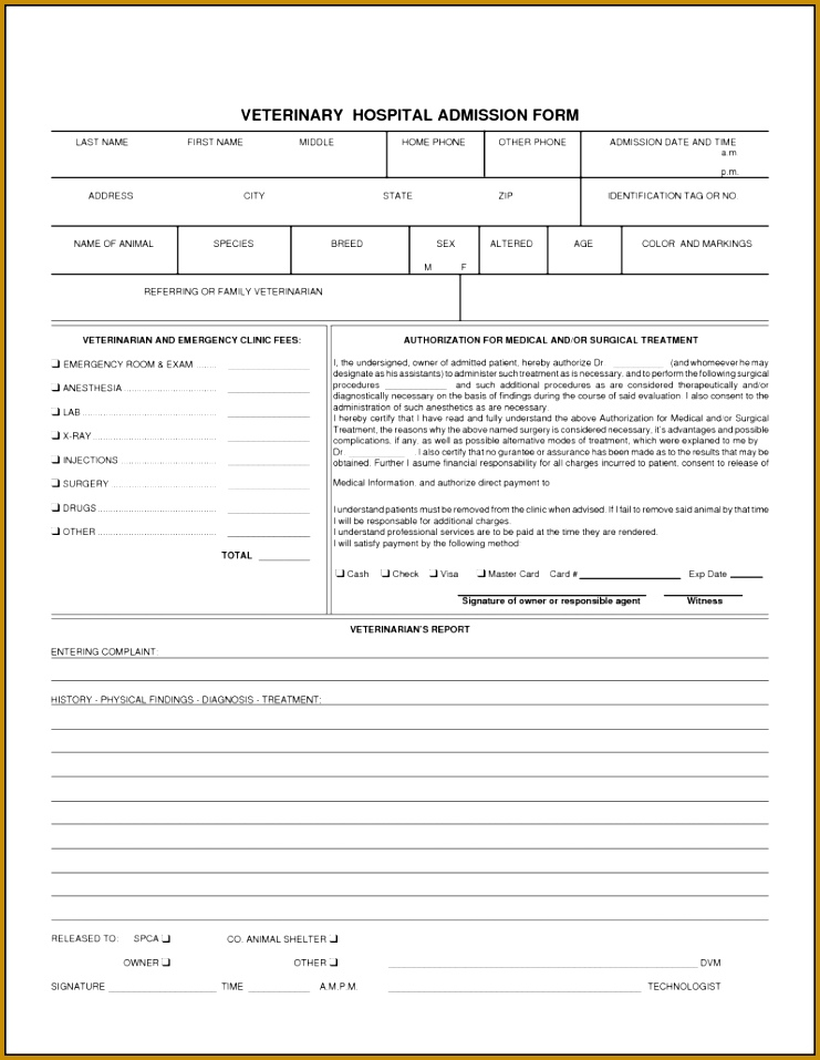 Anesthesia Record Form Template Choice Image - Template Design Ideas