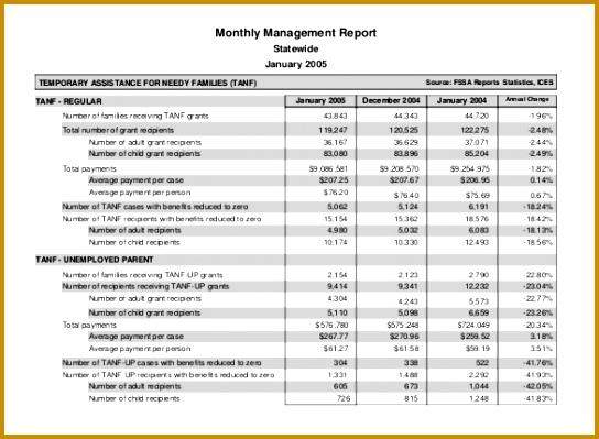 5 Daily Financial Report format FabTemplatez