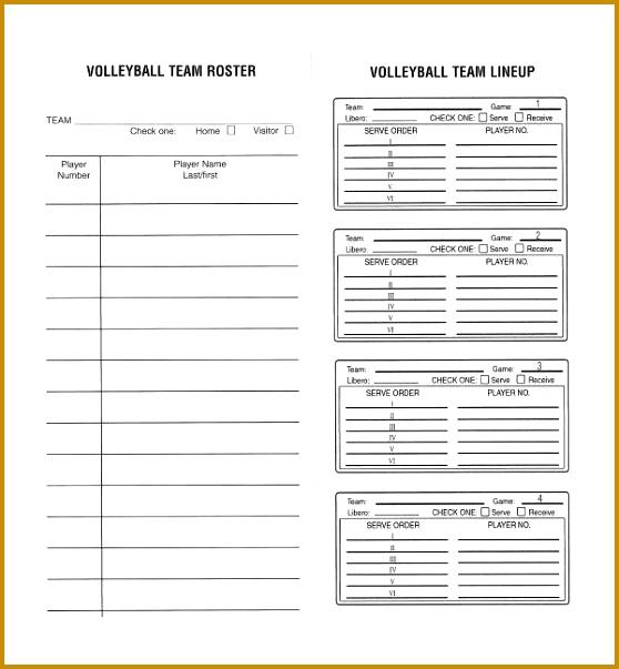 3 Hockey Game Sheet Template FabTemplatez