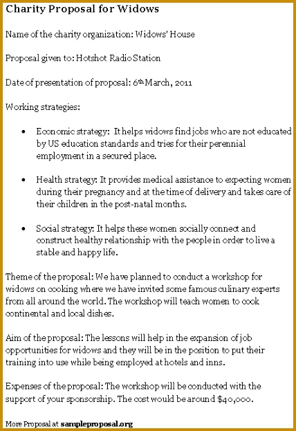 Charity Proposal Template loan proposal sample - charity proposal