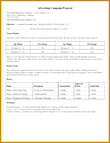 commercial proposal sample - Intoanysearch - commercial proposal template