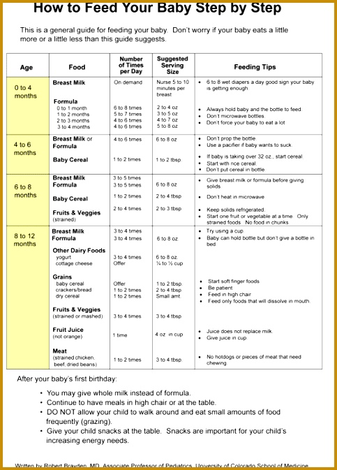 Baby Feeding Schedule Template 93784 8 Best Of Printable Diaper