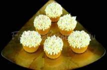 White Flower Cupcakes