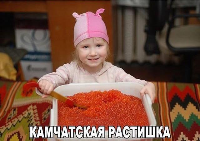 Вот такая она, жизнь на Камчатке!