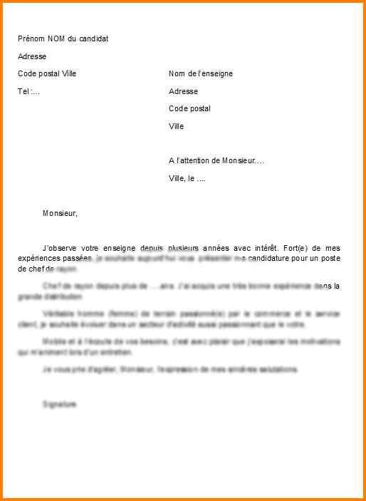 lettre de motivation candidature spontanee vendeur
