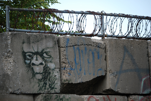 Monkeyface - Greenpoint, Brooklyn - © Frank H. Jump