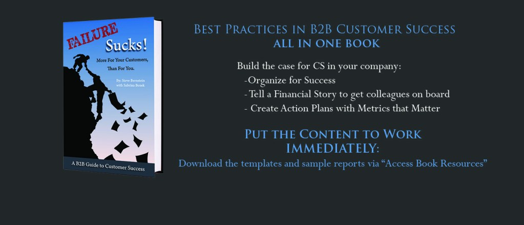 Waypoint wrote the book on B2B Customer Success